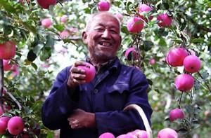 Dang Jiuru sourit en montrant une pomme cueillie dans son verger. © Luo Yi / PNUD Chine